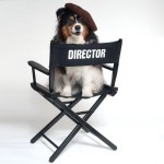 The Paw d'Or – Woofington Salutes Animal Actors