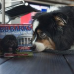 Good Reads: Bo Barks, the First Pooch Tells All