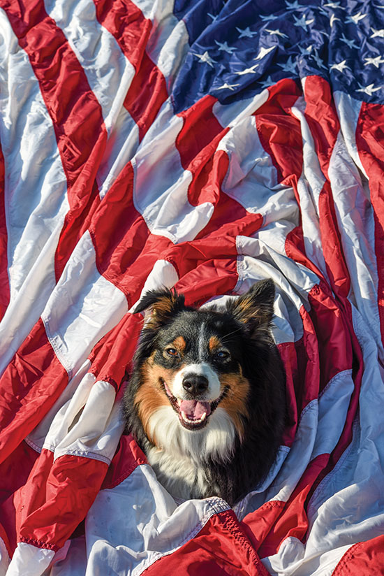 Aussie with US Flag, photo by Tom Grotta