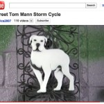 A Dog Named Wall Street
