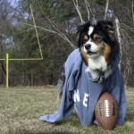 Superbowl XLVI: Not Just An Excuse For Snacks