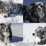 I Love a Snow Day!